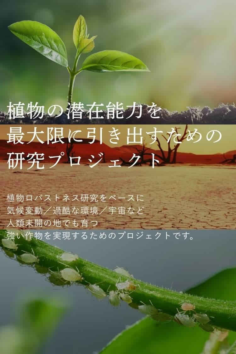 山口大学研究拠点群形成プロジェクト 植物ロバストネス